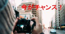 top-kiji243