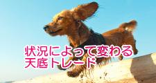 top-kiji247